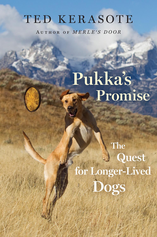 Pukka_s_Promise