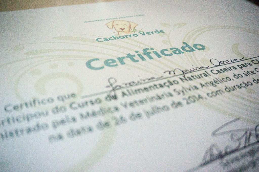 Certificado de participação no curso.
