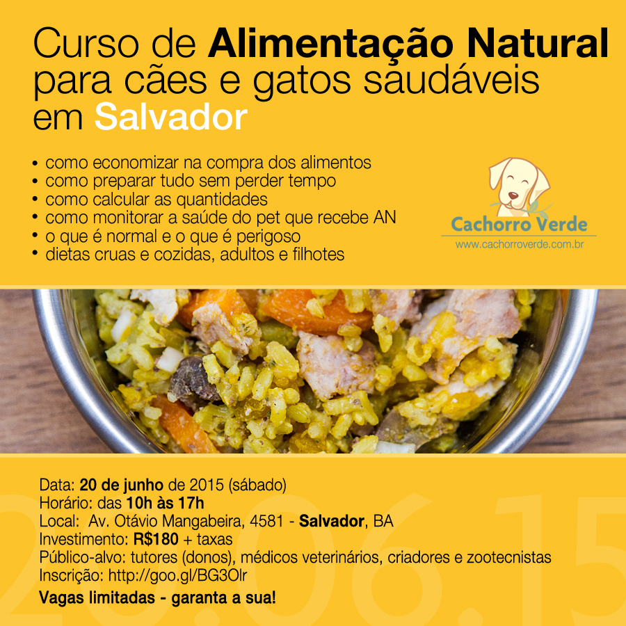 salvador2015